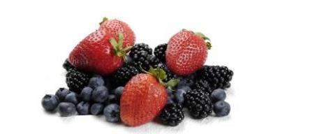 Ernährungsberater Fortbildung